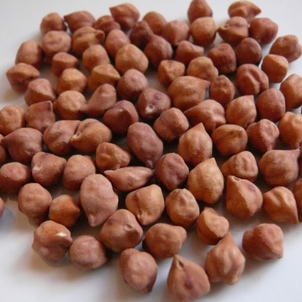 dau ga nau brown chickpeas