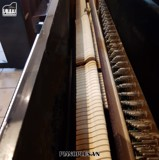 ĐÀN PIANO UPRIGHT EARL WINDSOR W112