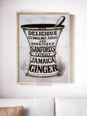 jamaica ginger food and beverage vintage advert ap phich quang cao xua vintage poster