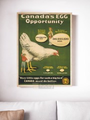 canada s egg opportunity by ad ap phich quang cao xua vintage poster