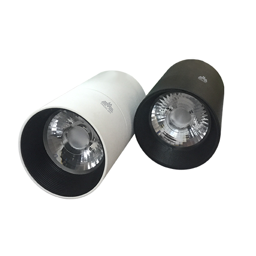 Đèn LED Downlight Model 10C