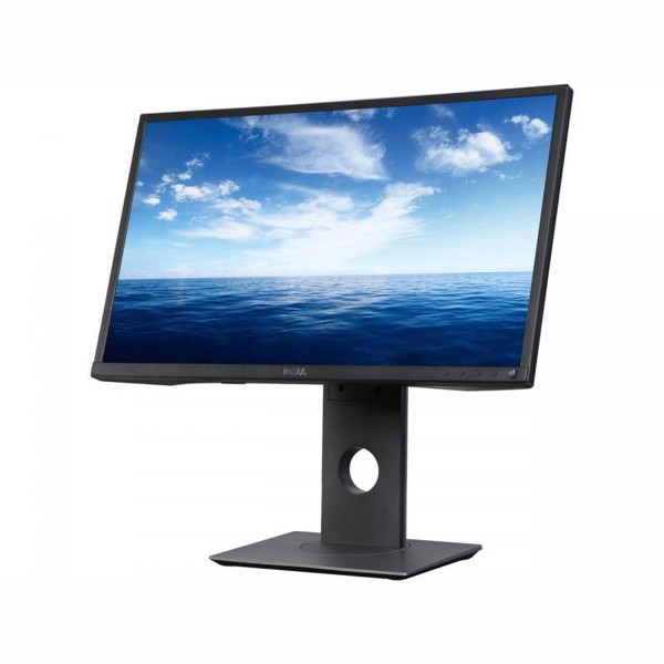 Dell 23.8″ Professional P2417H FHD IPS
