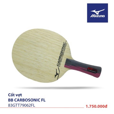 CARBOSONIC FL