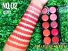 Set Son 10 Ô Sivanna Colors Pro Lipstick Palette HF383