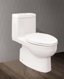 ONE PIECE TOILET C509KL