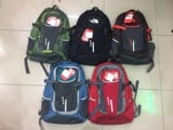 Balo Laptop The North Face Amira