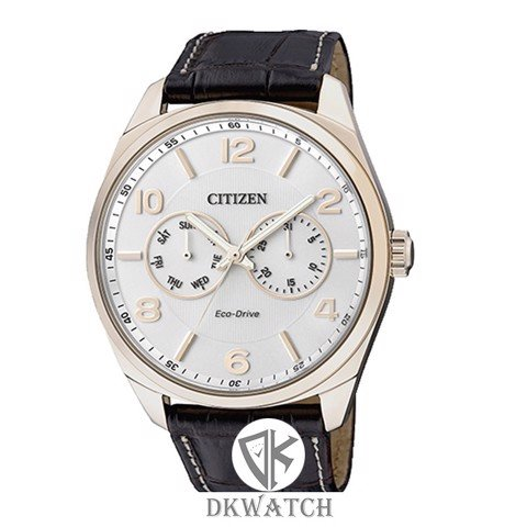 CITIZEN AO9024-08A