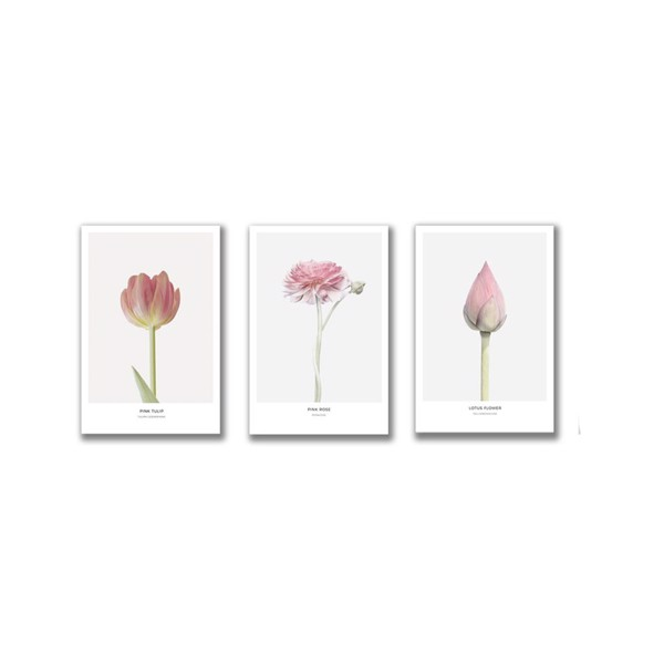 Bộ 3 Tranh Canvas Pink Flowers