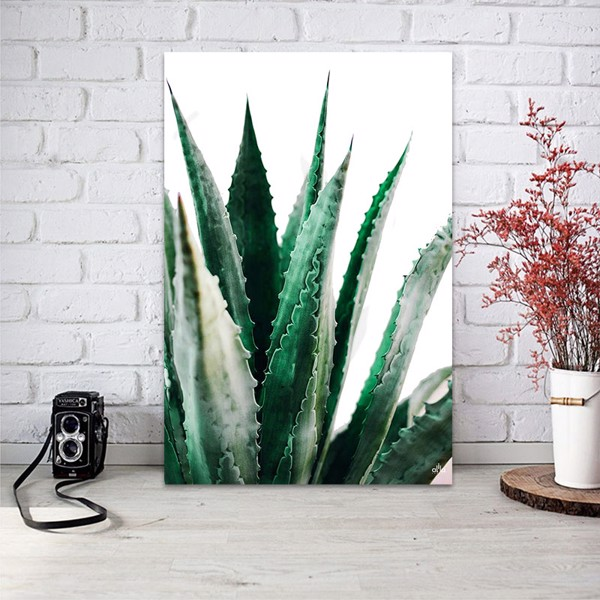 Tranh Canvas Cactus Leaves Alila (40x60cm - 50x75cm - 60x90cm)