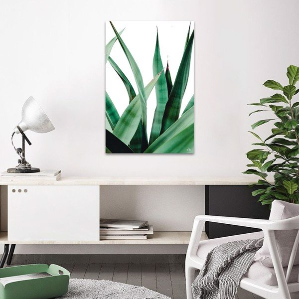 Tranh Canvas Pineapple Leaves Alila (40x60cm - 50x75cm - 60x90cm)