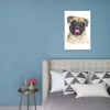 Tranh Canvas Pug Puppy Alila (60x90cm)
