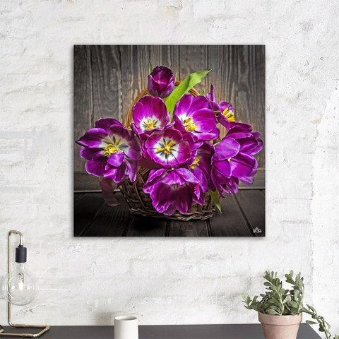 Tranh Canvas The Flower 9 Alila (40x40cm - 60x60cm - 80x80cm)