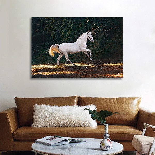 Tranh Canvas The Horse 2 Alila (30x45cm - 40x60cm - 50x75cm - 60x90cm)