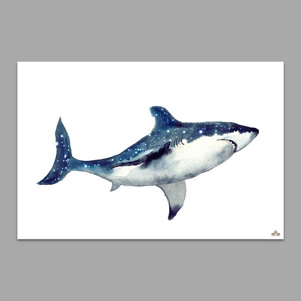 Tranh Canvas The Shark Alila (40x60cm - 50x75cm - 60x90cm)