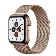 Apple Watch Series 5 (LTE) 40mm - MWWV2