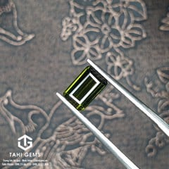 TAHI 8153 NATURAL TOURMALINE H8 T4