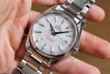 Omega Aqua Terra Master Co-Axial Chronometer 231.10.42.21.02.004