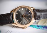 Omega Aqua Terra Master Co-Axial 18k Rose Gold 231.53.39.21.06.003