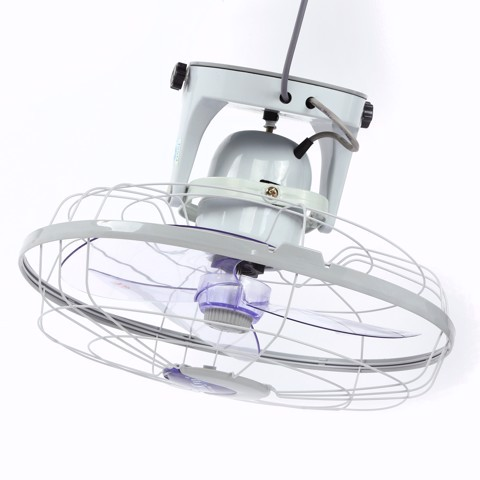 Orbit Fan (Oscillating with switch control)