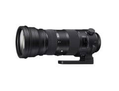 Sigma 150-600mm F5-6.3 DG OS HSM Sport for Canon