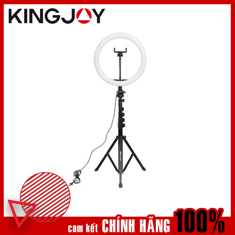 "R11+FL019 – Kingjoy 11"" Video Ring Light with Stand"