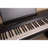Piano điện Casio PX-160