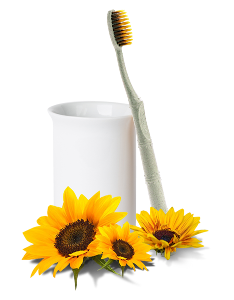 Bizs+ Sunflower Toothbrush