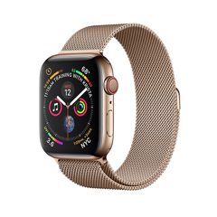 Apple Watch Series 4 Bản Thép 44mm (LTE + GPS)