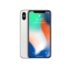Apple iPhone X Edition 256GB Global (Silver)