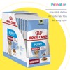 Pate chó Royal Canin Medium Puppy 140g - Gravy 1 hộp 10 gói