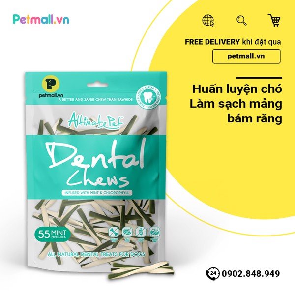 Snack gặm Dental Chews - 55 Mint Mini Stick