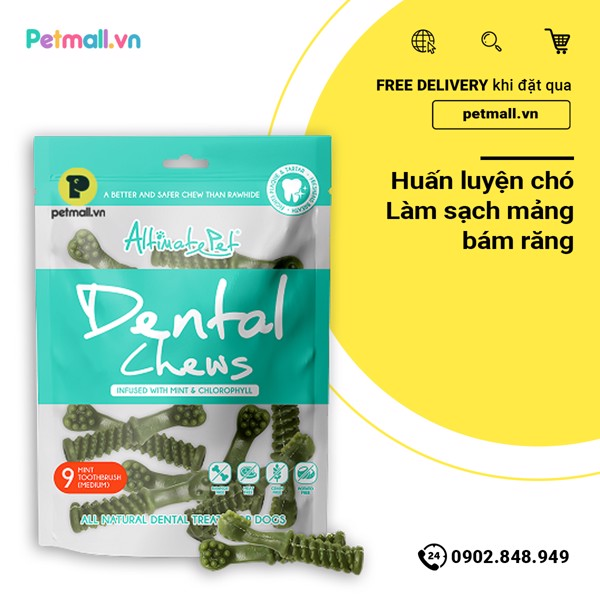 Snack gặm Dental Chews - 9 Mint Toothbrush Medium