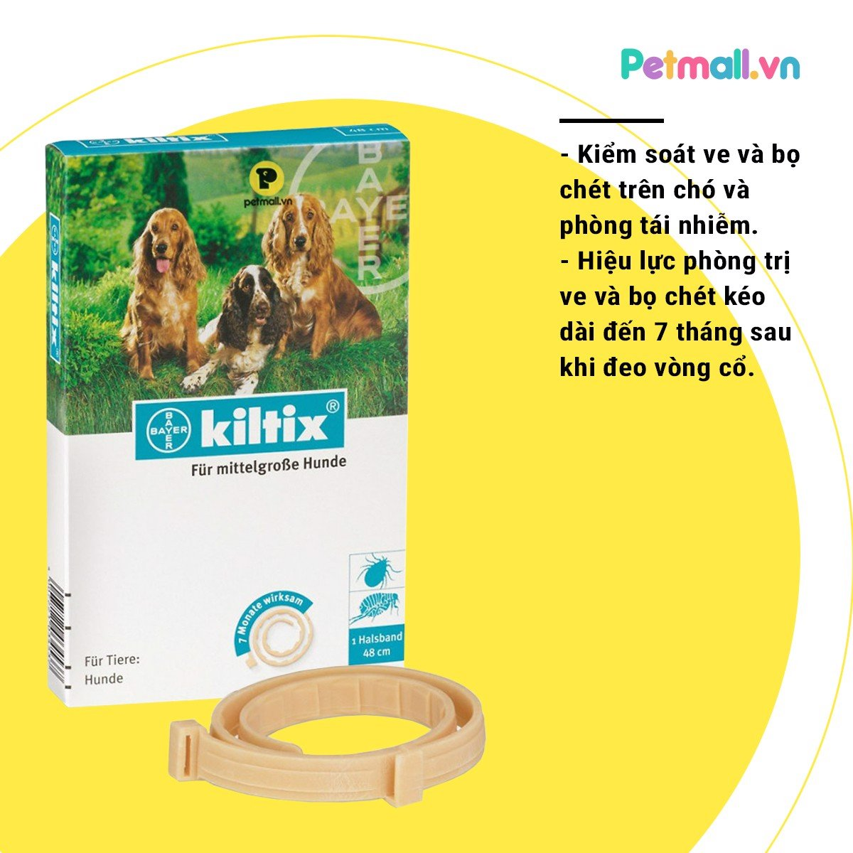 KILTIX Collar for dog medium size - 48cm
