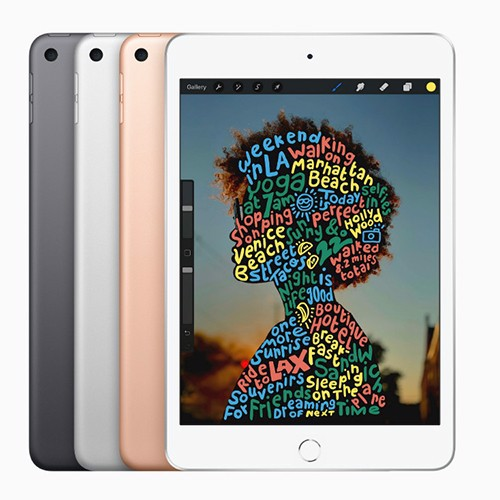 Ipad Mini 5 (New 100%)