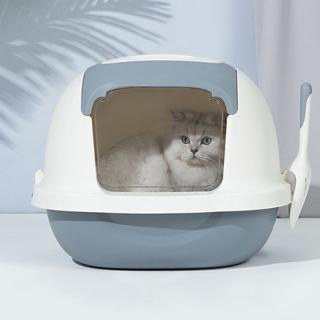Nhà vệ sinh mèo