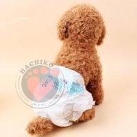 Bỉm Quần Cho Chó DoNo