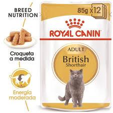 Pate Royal Canin Bristish ShortHair dành cho mèo Anh lông ngắn