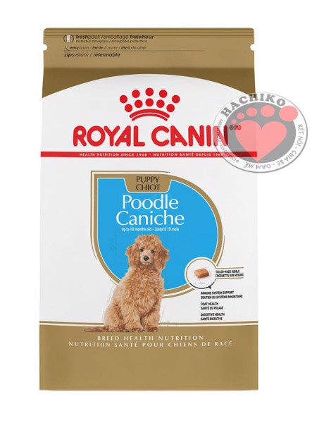 royal-canin-poodle-puppy