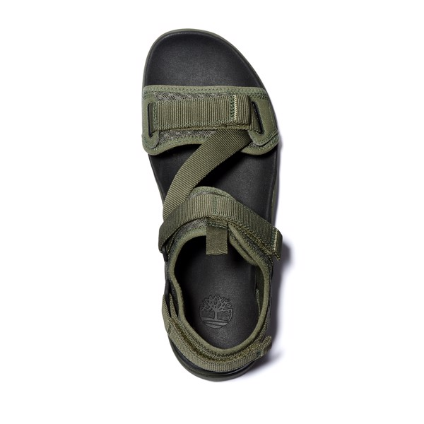 Timberland Ripcord Sandals 'Olive'