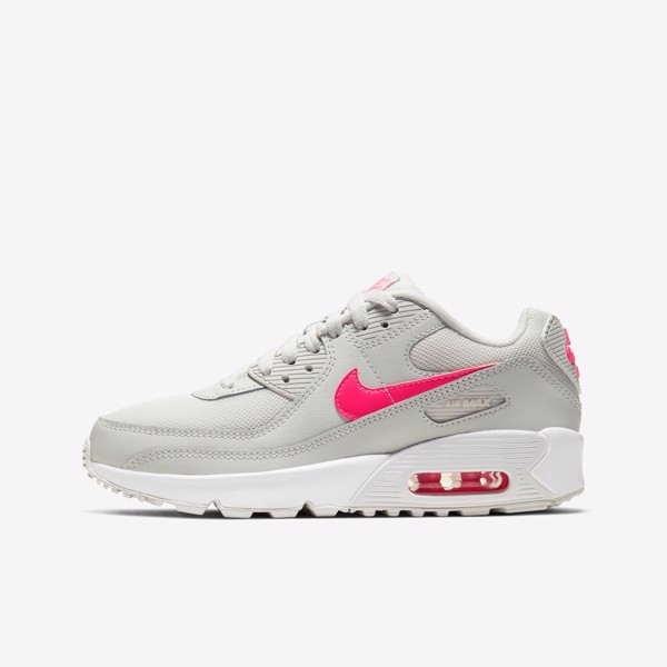 Nike Air Max 90 - Photon Dust/Digital Pink