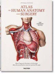 Bourgery. Atlas of Human Anatomy and Surgery (Hardback)