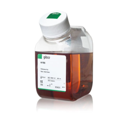 Gibco™ Fetal Bovine Serum, certified, heat inactivated, United States, 10082147