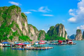 LUXURY DAY CRUISE IN HALONG BAY / 2021-2022