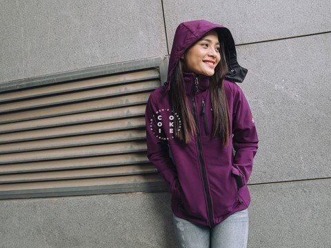 The North Face Women Apex Bionic 2 Hoodie - Violet (Women's)