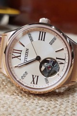 Citizen PC1003-58X