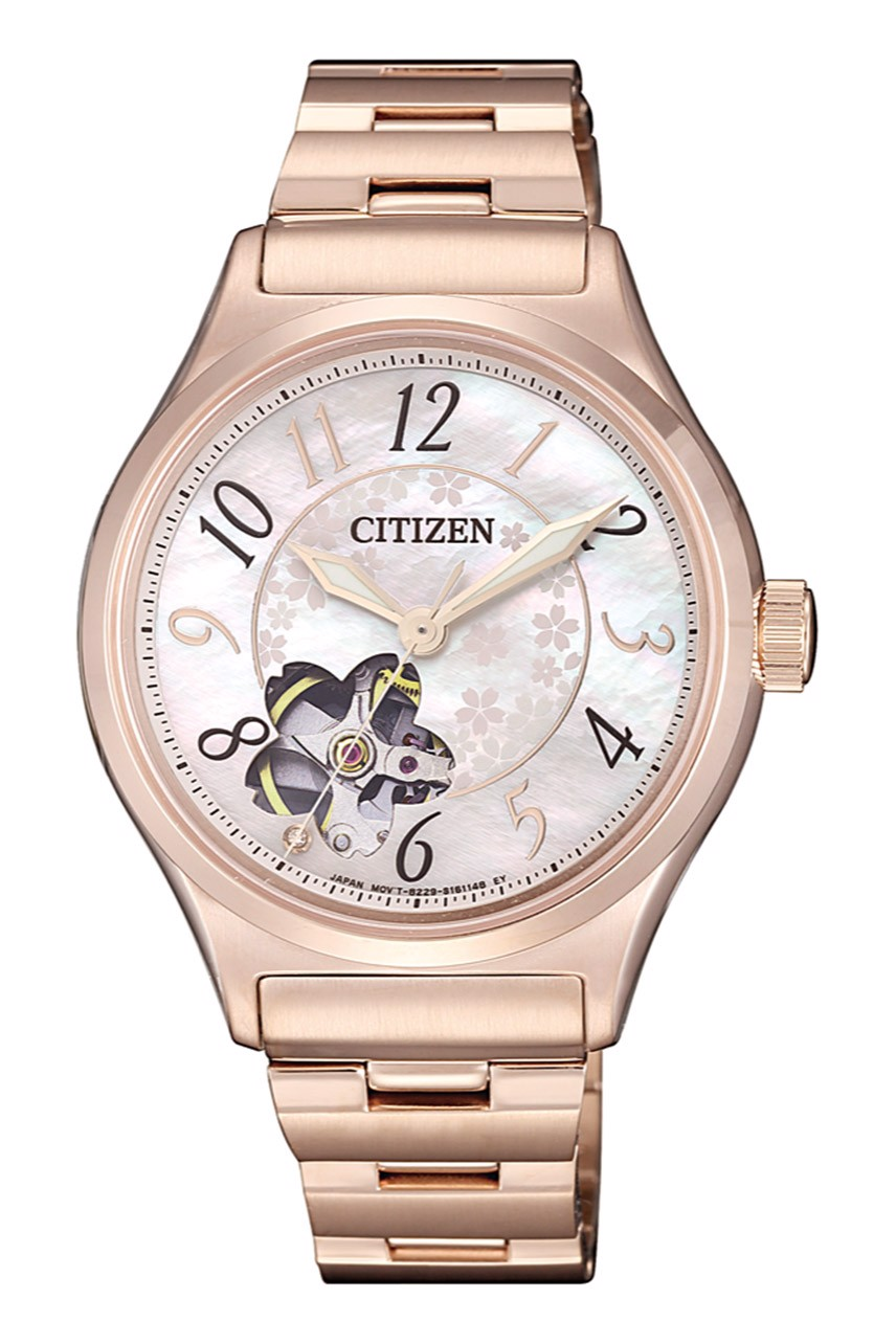 Citizen PC1007-65D