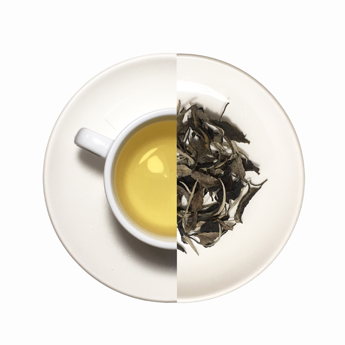 Shan Tuyết Bạch Trà Mây Cao Cấp 75g - White Tea