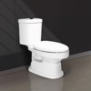 V119 two pieces toilet