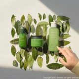 [New 2019] Kem Dưỡng Da Innisfree Green Tea Seed Cream