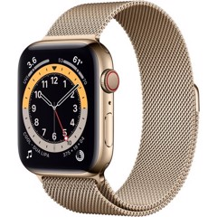 Apple Watch Series 6 LTE - Thép Gold 40mm M06W3 (Nhập khẩu)